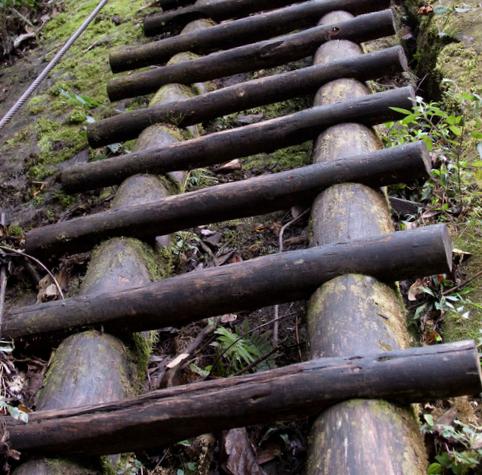 ladder V2